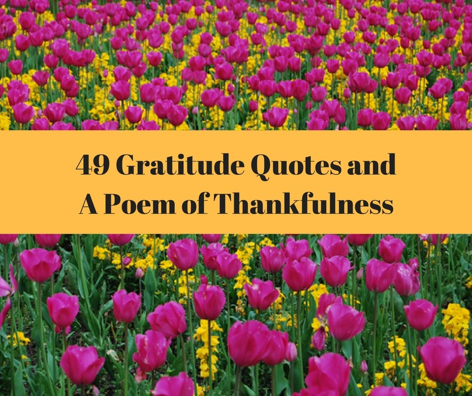 49 Gratitude Quotes And A Poem Of Thankfulness