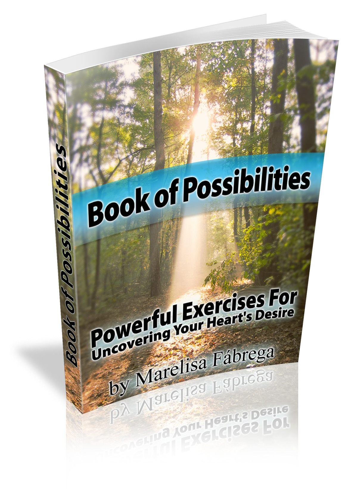 bookofpossibilities-large