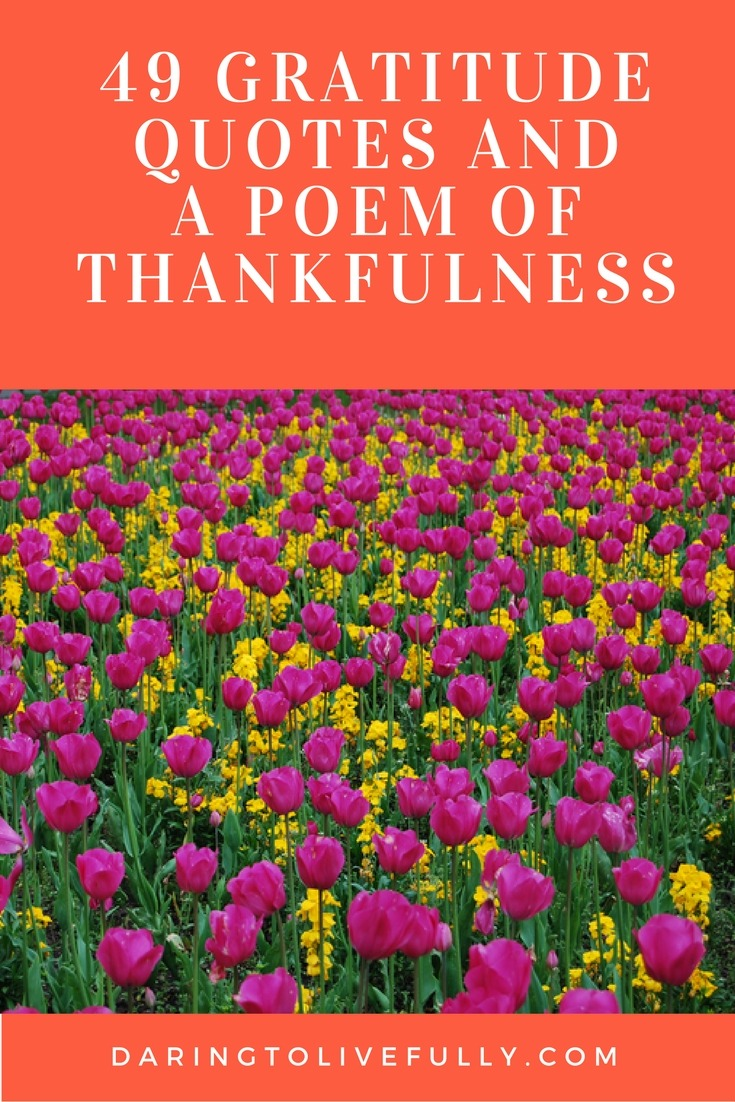 49 gratitude quotes and a poem of thankfulness daring to