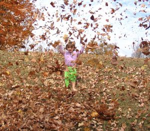 fall bucket list: jump into a pile of leaves