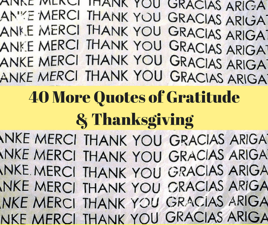 Thanksgiving Quotes 60 Quotes Of Gratitude And Thanksgiving Extraordinary Thankful Quotes In Hardships