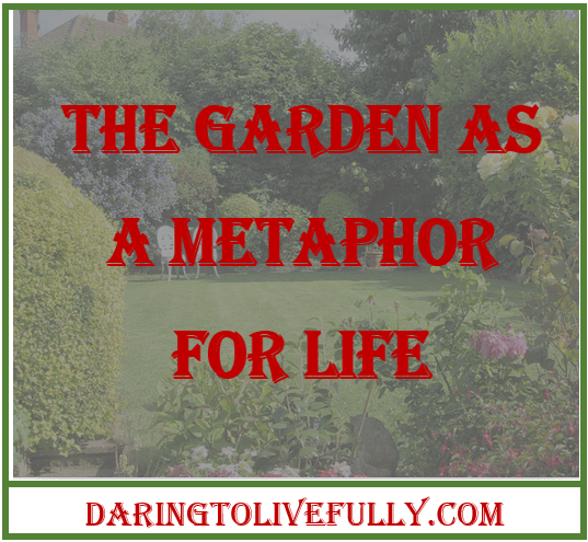 The Garden As A Metaphor For Life 10 Life Lessons From Gardening